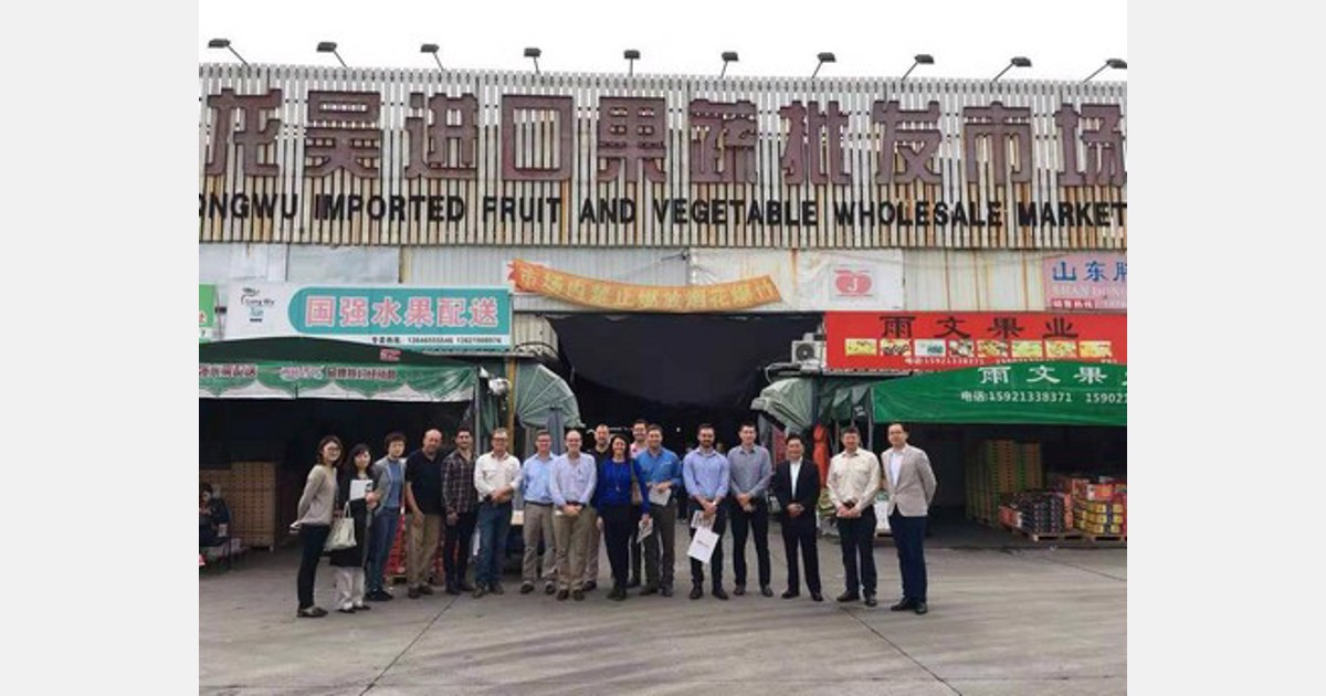International Vehicle Importers >> Chinese Banana Imports Grow Following International Free