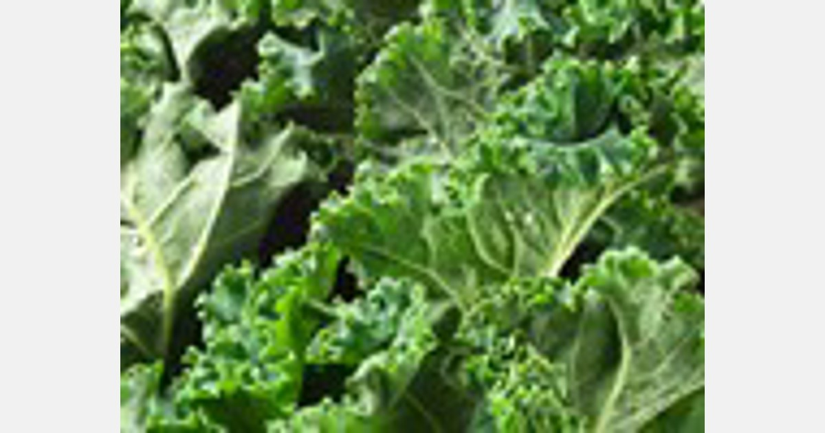 Possible Listeria contamination in sweet kale bagged salad blend
