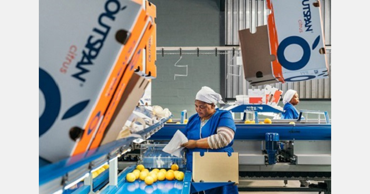Market wonders whether Zeder has been approached to sell Capespan, The Logistics Group