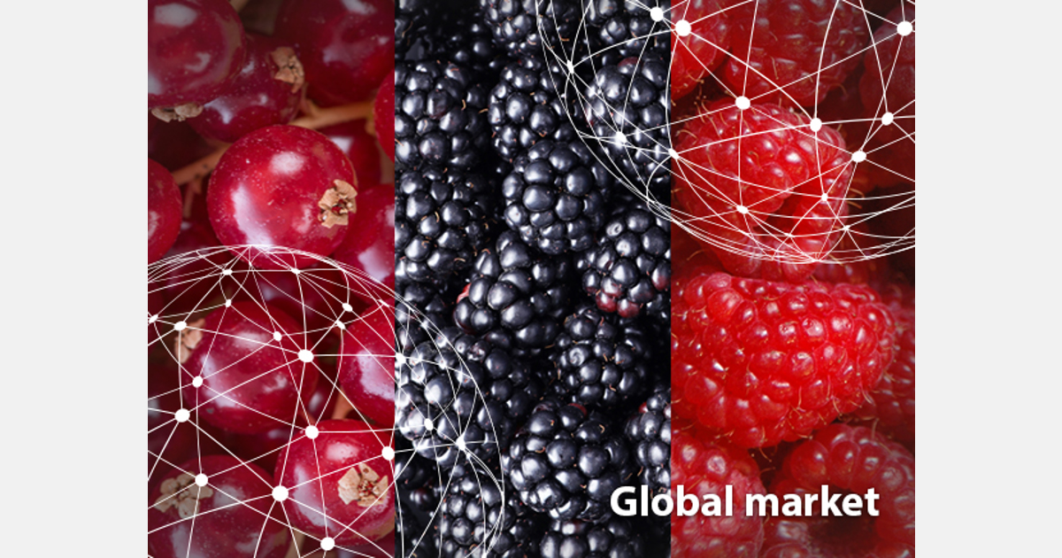 OVERVIEW GLOBAL RASPBERRY, BLACKBERRY AND REDCURRANT MARKET