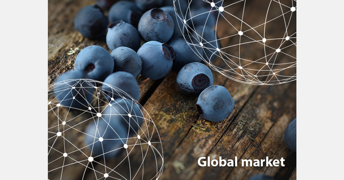 OVERVIEW GLOBAL BLUEBERRY MARKET