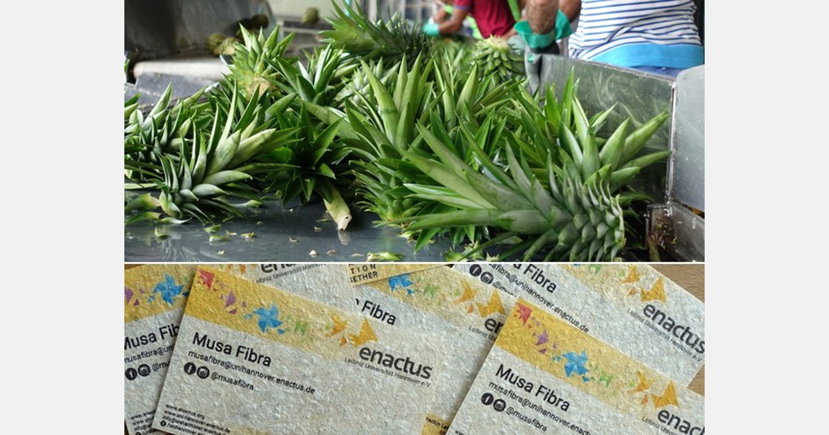 Student Initiative Develops Paper From Pineapple Crowns And
