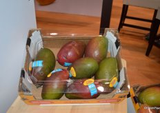 Palmer mangos from Brazil on display in the CarbAmericas booth.