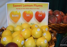 Sweet lemon plums from Chile on display at Jac. Vandenberg, Inc. Customers buy these sweet plums when yellow, but they are ready-to-eat once they've turned red.