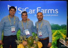 Virtually standing in a lemon orchard are Luis Gudino, Rodrigo Venegas Ochoa and Miguel Rivera with Sicar Farms.