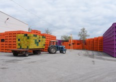 Just outside the packinghouse you can see loads of crates, which are washed and then reused.