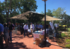 Delegates enjoying the Trade Show at the Australian Mango Conference 2019