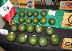 Detail about the Mexican avocados.