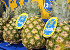 Chiquita branded Premium pineapples.