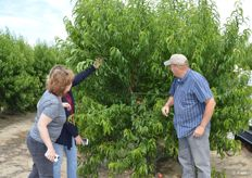 Kellee Harris, Jeannine Martin and Jeff Warkentin with Giumarra look at Mica nectarines.