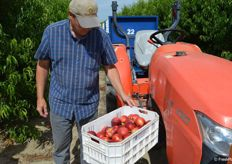 Jeff Warkentin with Giumarra is happy with the first harvest of Mica nectarines.