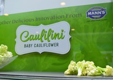 Caulilini; a new product from Mann Packing that is part of Del Monte Fresh.