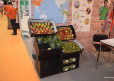 The produce presented by AgroFair from Latin America.