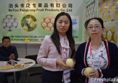 Mr. Pang, General Manager, and colleagues from Botou Panglong Fruit Products Co., Ltd. Specialised in growing, packing and exporting pears.