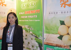 Shirley Yang from Xinji Shengyi Fruits Co.,Ltd. They are a professional pear producer and exporter.