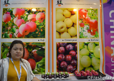 Ms. Vivian from Shaanxi Shengfeng Imp&Exp Trading Co.,Ltd. Focused on apple export.