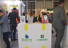 The iBerry/uBerry stand.