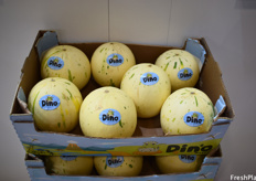 Dino melons are grown in Brazil by Agricola Famosa and have been successful in Europe for the past few years. At the end of 2019 they were first introduced into the US.