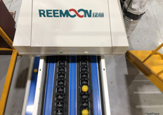 Reemoon has continued to provide after-sales service to the Sparacino brothers through online communication