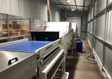 Reemoon systems cater for many areas of post-harvest, including quality, visual, weight, colour, density and defect sorting.