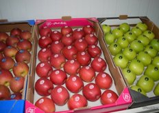 Delta Agrar is the only producer in Serbia licensed to produce Pink Lady apples.
