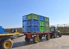 Tractor transporting apple crates.