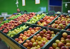 A wide selection of apple varieties.