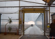 A view of the inside of the greenhouse.
