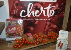 Cherto: cherry tomato on the vine