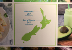 The Bay of Plenty in New Zealand is where almost 65% of the country's avocado crop is grown.