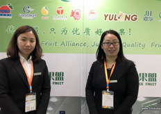 To the right is Holly Wu, General Manager of the recently launched Hebei Choice Fruit Alliance, a cooperation between Hebei pear growers, packers and exporters.