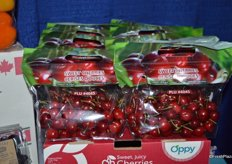 Sweet cherries from Chile, marketed by Oppy