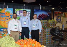Michael Reimer, Dave Maddux and Darrin Kirk with Brandt Farms, Inc.