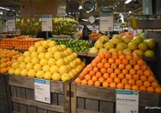 Beautifully merchandised; different citrus items placed on top of wooden crates.
