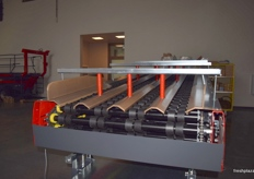 Rollers for larger round fruits such as apples as part of a sorting line.