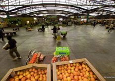 The Tshwane Fresh Produce Market in Pretoria is the second largest market in South Africa, with approximately half the turnover and tonnage of the Johannesburg Fresh Produce Market.