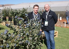 Dave Mazzardis, Australian breeder of the OZblu blueberry varieties with Roger Horak, Global CEO of OZblu.