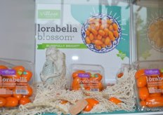 Lorabella Blossom™ tomatoes from Village Farms. An orange tomato with a blissfully bright® citrus essence. Lorabella Blossom™ is part of the San Marzano family.