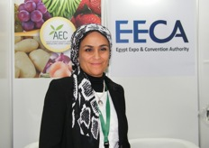 Ms. Hala for AEC and EECA (Egypt)