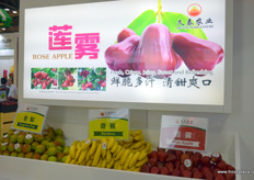 Wax apples by Jiu Tai Agriculture.
