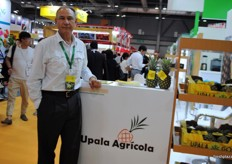 As China opened the borders for Costa Rican pineapples, the companies that were present were Pineapple producers/Exporters. As well Alfredo Volio, the President of Upala Agrícola.