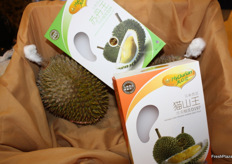 Durian-promotion