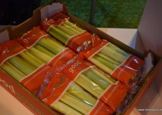 Snacking celery in individual packs from Horto Fortini España.