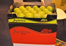 Fruitport promotes its products in Spain as a specialist in Kiwi, Pinklady, Gala, Chanteclerc and Canada Gris.