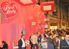 Overview of Pink Lady stand