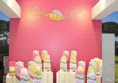 Lady Leaf: the new concept for which chicory and other leafy vegetables are packaged with nuts and dried fruits. www.ladyleaf.com.
