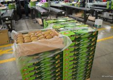 There are jumbo gold kiwifruit packed in single layer trays, this has a been a season of particularly big fruit.